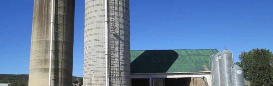 Conebella Farm, Honey Brook, Chester County