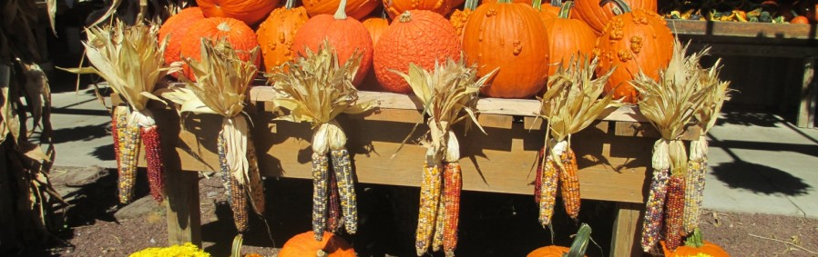 Fall Decorations at Pete's Produce Farm